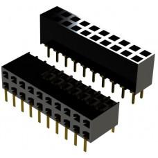BCSS-217-D-06-GT